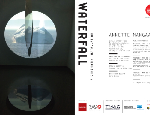 ANNETTE MANGAARD Water Fall: A Cinematic Installation